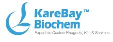 KareBay