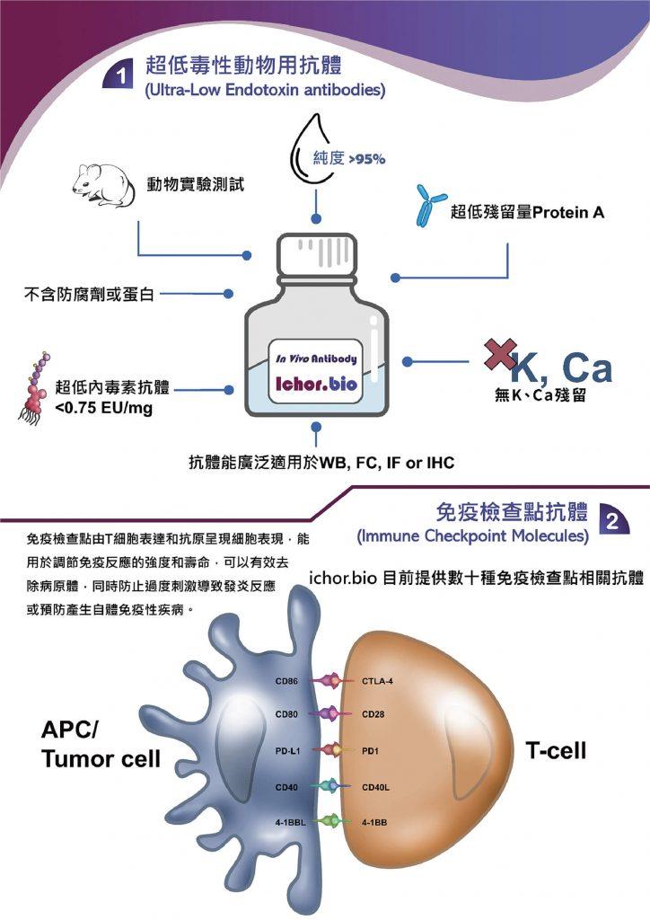 ichor-bio-抗體優惠EDM-2